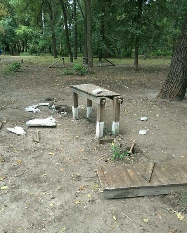В мелитопольском парке неизвестные устроили погром, фото-5