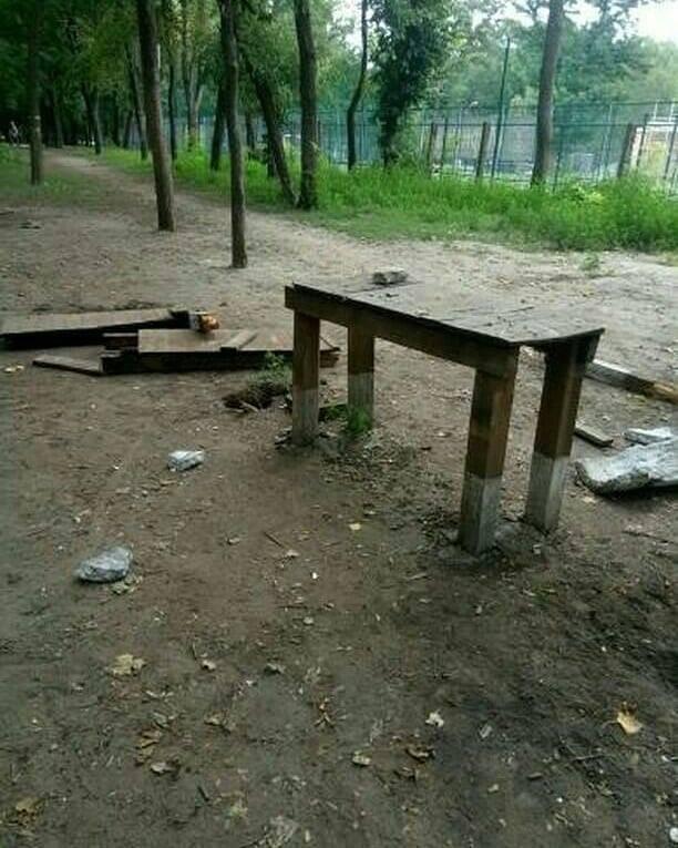 В мелитопольском парке неизвестные устроили погром, фото-4