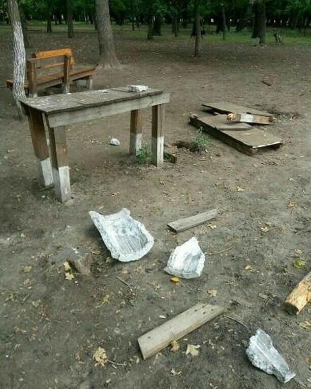 В мелитопольском парке неизвестные устроили погром, фото-3