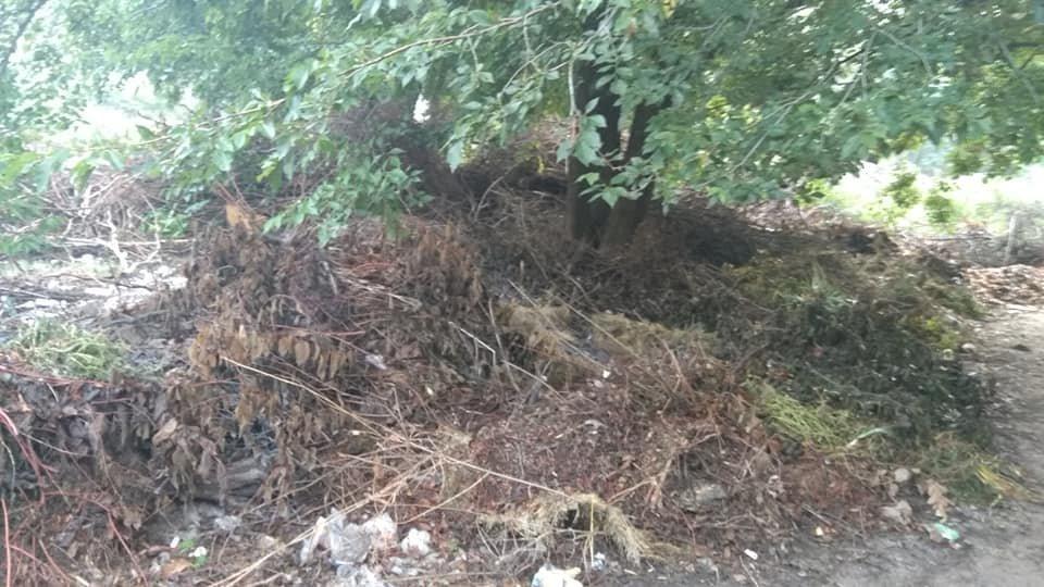 В мелитопольском парке образовалась свалка , фото-1