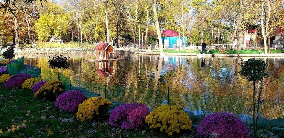 В сети показали фото осеннего пруда в мелитопольском парке, фото-1