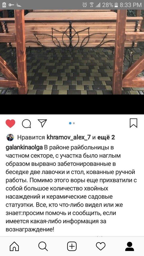 В Мелитополе со двора частного дома украли деревянную мебель и саженцы , фото-2