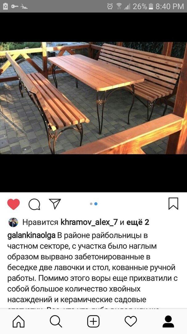 В Мелитополе со двора частного дома украли деревянную мебель и саженцы , фото-1