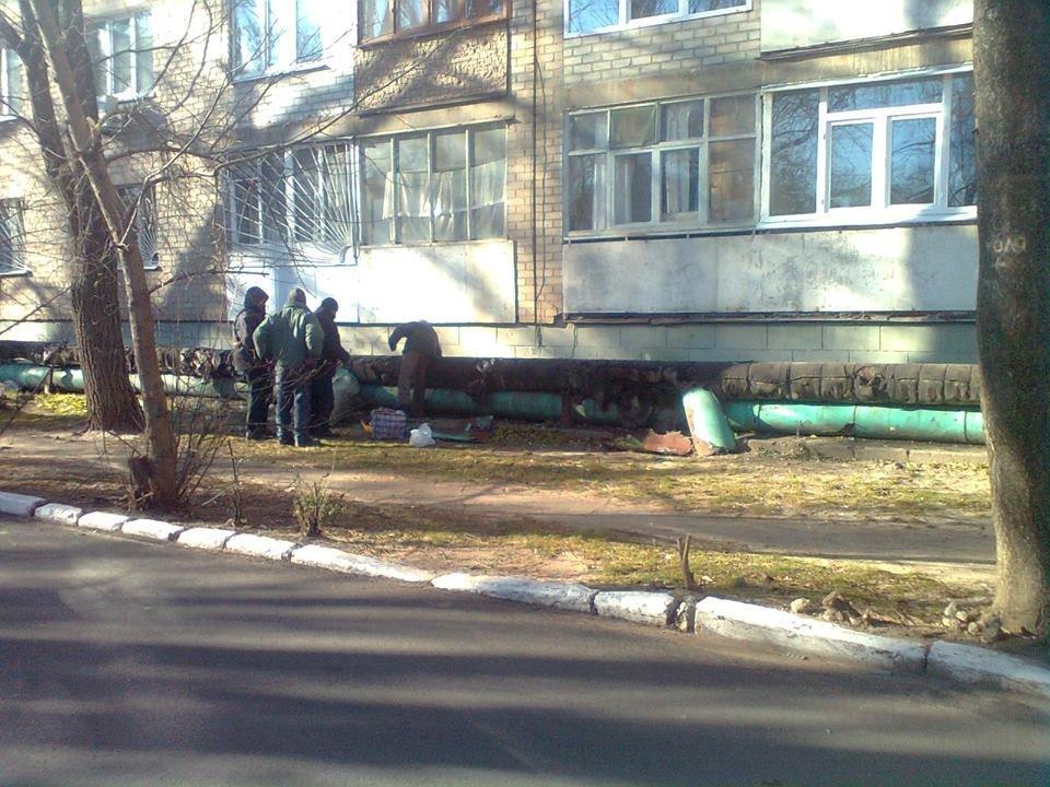 В Мелитополе бездомные демонтировали обшивку теплотрассы , фото-2, Фото А. Николаенко