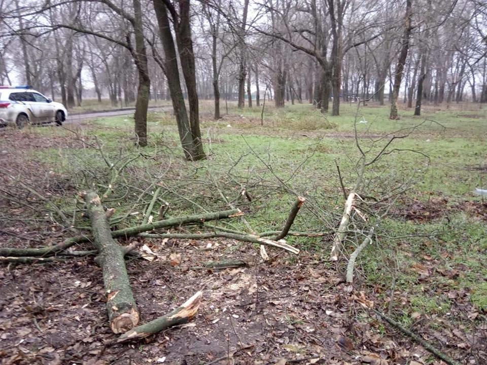 В Мелитопольском районе задержали мужчину, срубившего дерево в центре села , фото-3