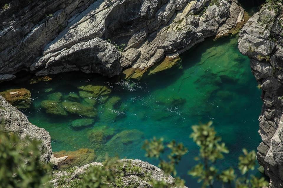 Любите природу и парки? Вас ждет зеленая Черногория!, фото-2