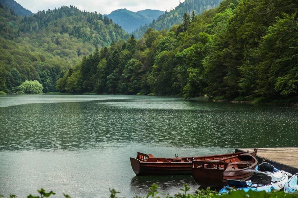 Любите природу и парки? Вас ждет зеленая Черногория!, фото-3