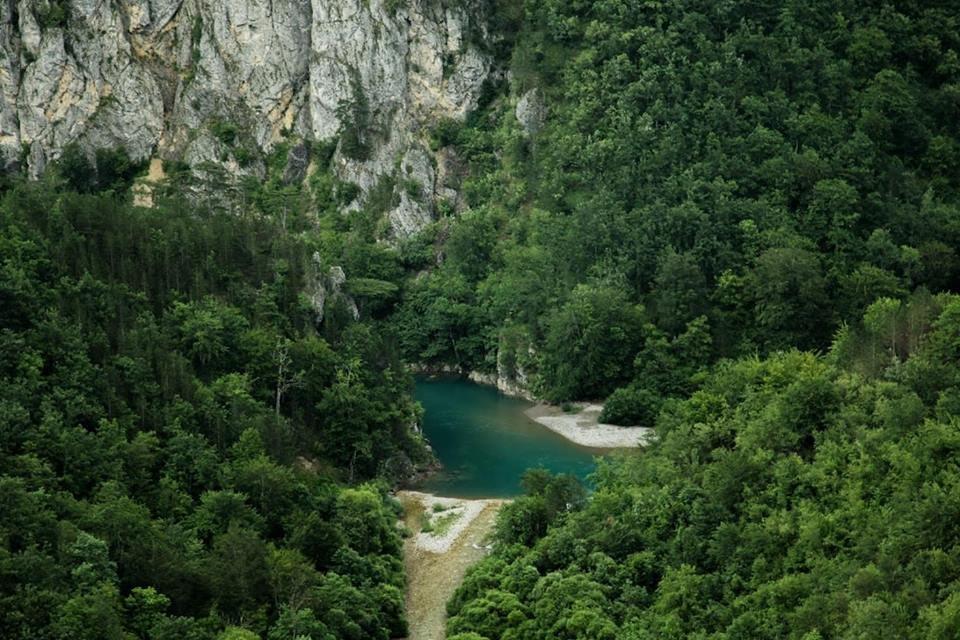 Любите природу и парки? Вас ждет зеленая Черногория!, фото-4