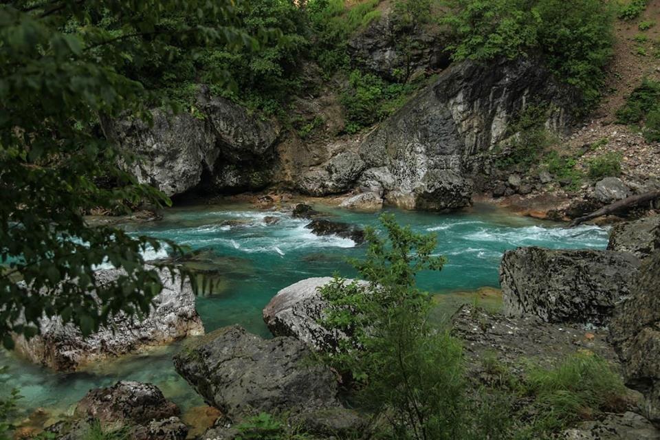 Любите природу и парки? Вас ждет зеленая Черногория!, фото-5