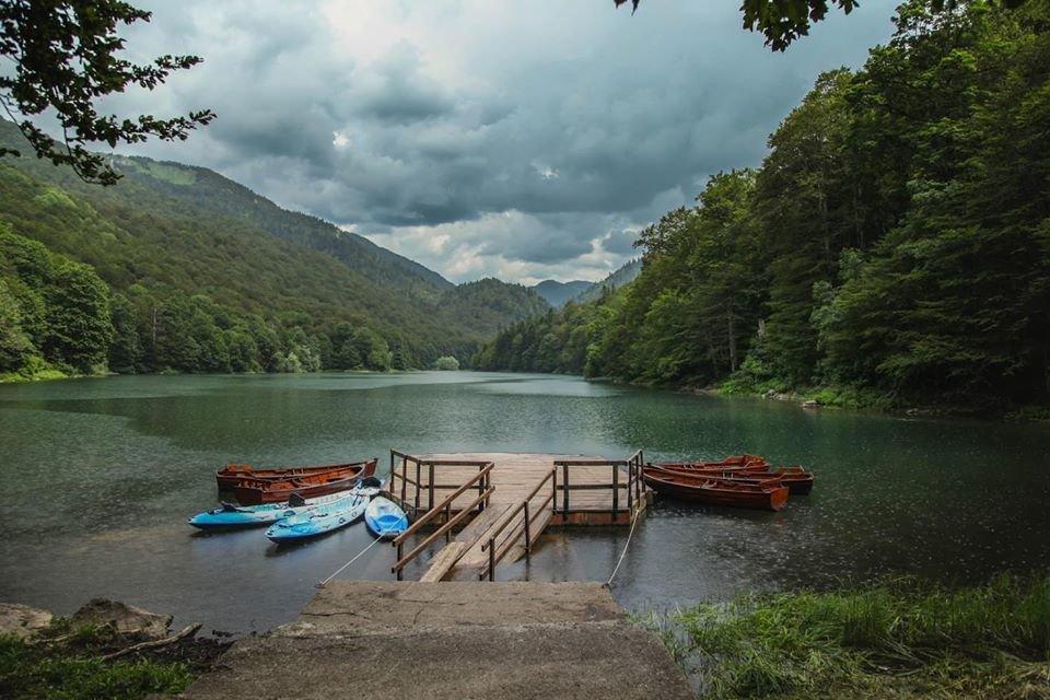 Любите природу и парки? Вас ждет зеленая Черногория!, фото-6