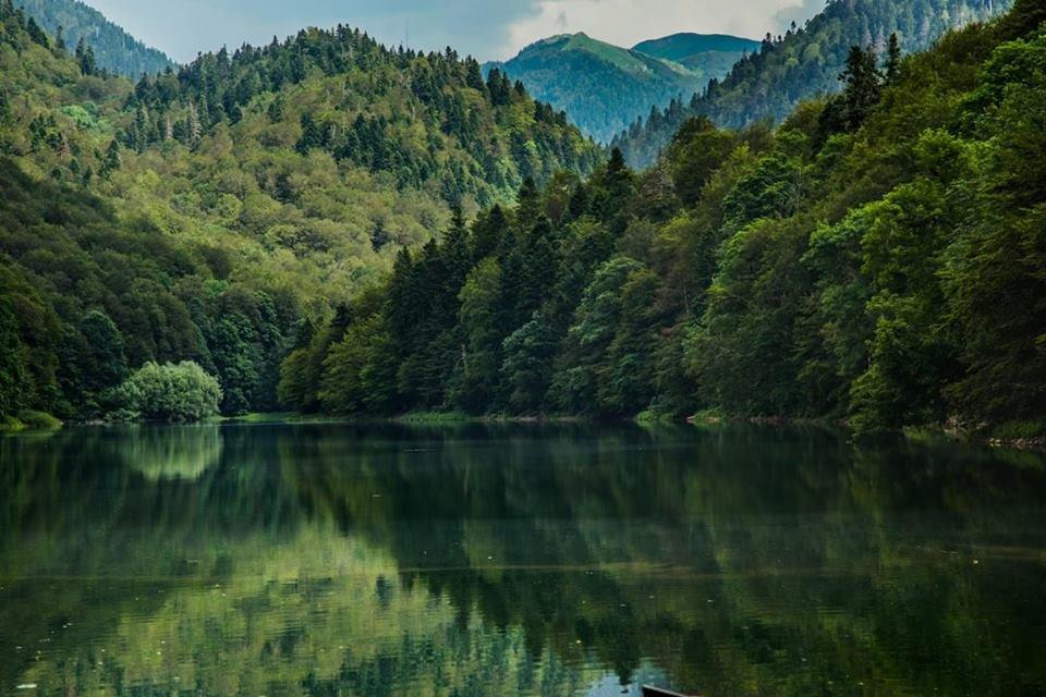 Любите природу и парки? Вас ждет зеленая Черногория!, фото-1