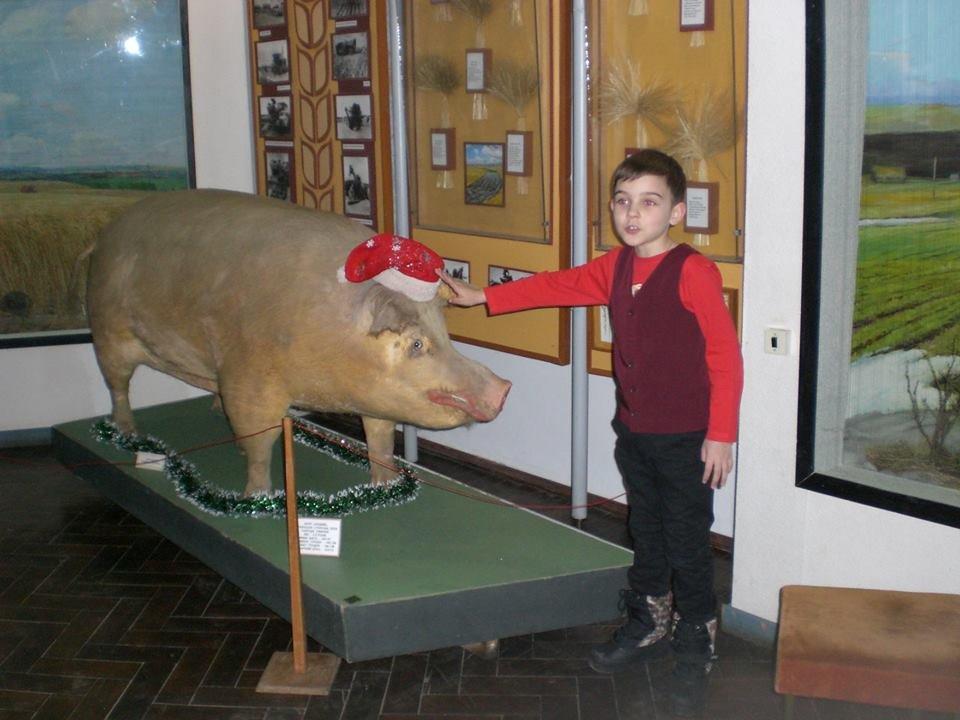 Мелитопольцы делают селфи в музее , фото-7