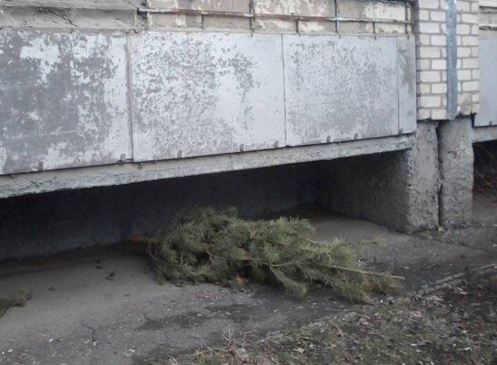 Мелитопольцы начали выбрасывать елки с балконов, фото-1, Фото из соцсети