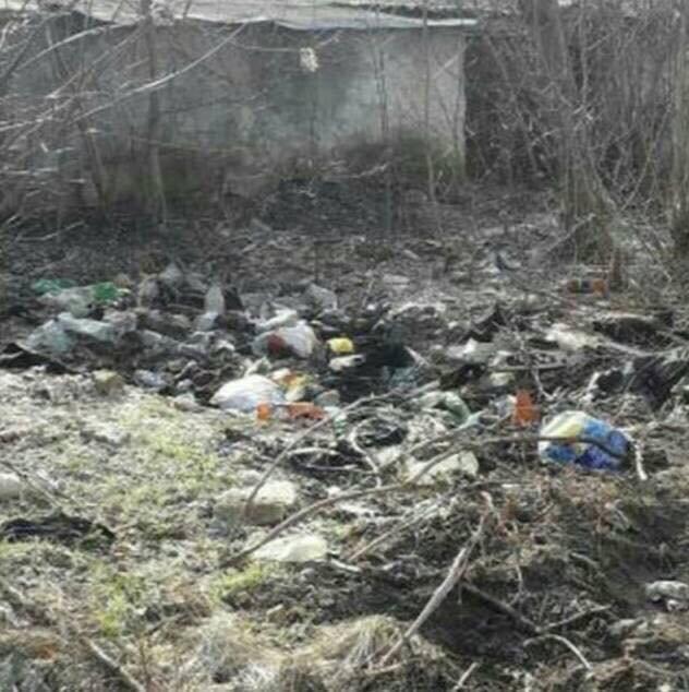 Мелитопольцы продолжают загрязнять лесопарк , фото-1