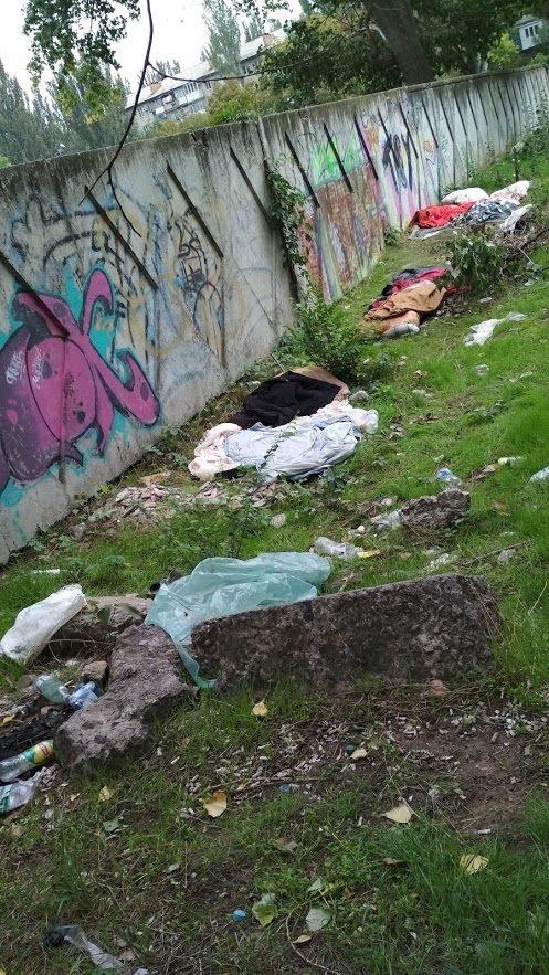 Мелитопольскую школу заставили убрать за бездомными , фото-2
