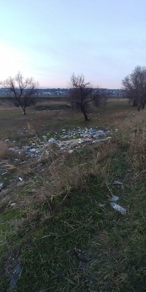 В Мелитопольском районе зеленую зону превратили в свалку , фото-4