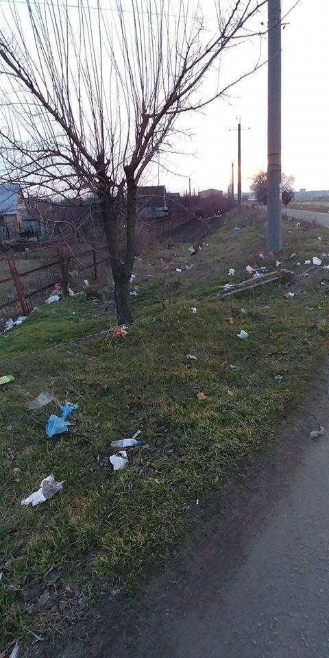 В Мелитопольском районе зеленую зону превратили в свалку , фото-6
