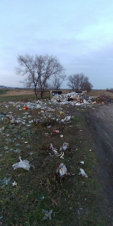 В Мелитопольском районе зеленую зону превратили в свалку , фото-2