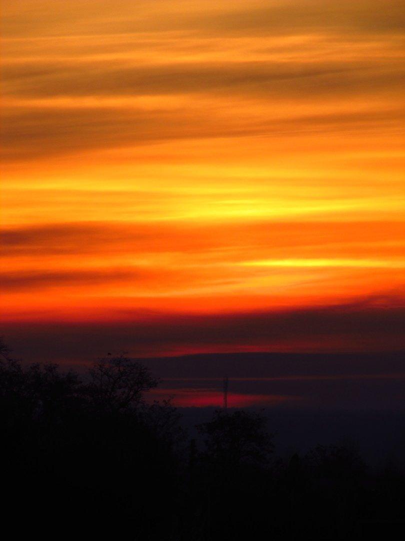 В сети опубликовали фото потрясающего рассвета в Мелитополе, фото-1