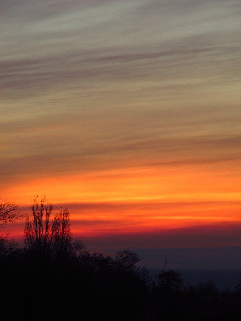 В сети опубликовали фото потрясающего рассвета в Мелитополе, фото-6