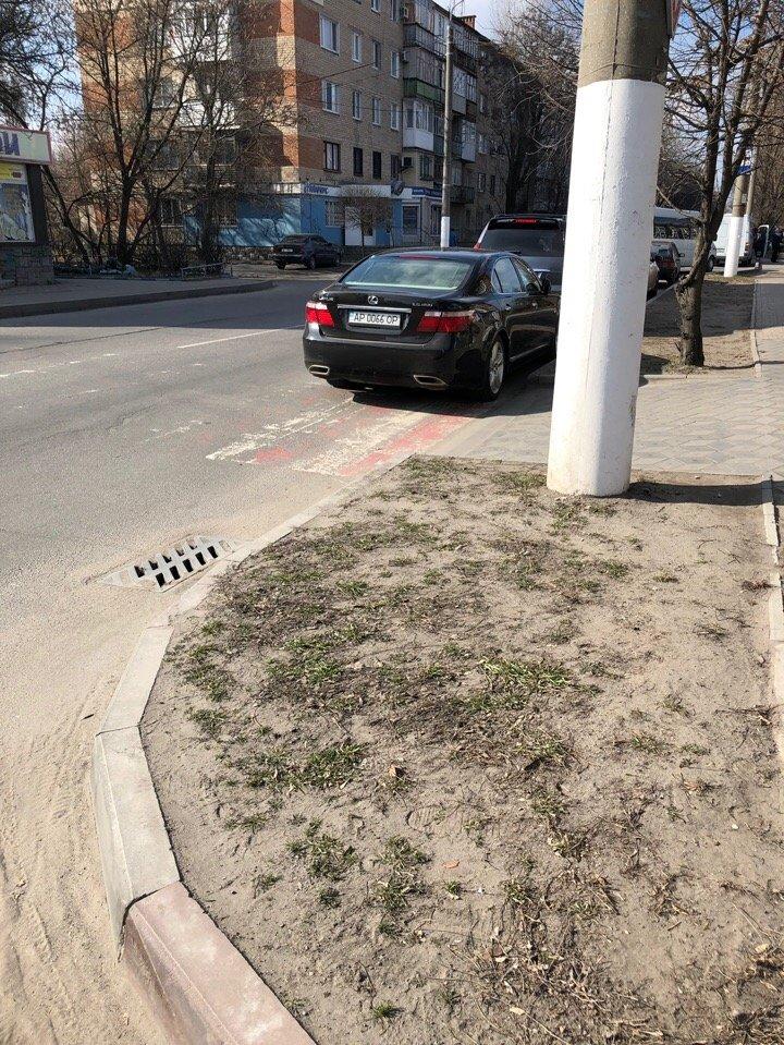 В Мелитополе автохам припарковался на пешеходном переходе, фото-3, Фото из соцсетей