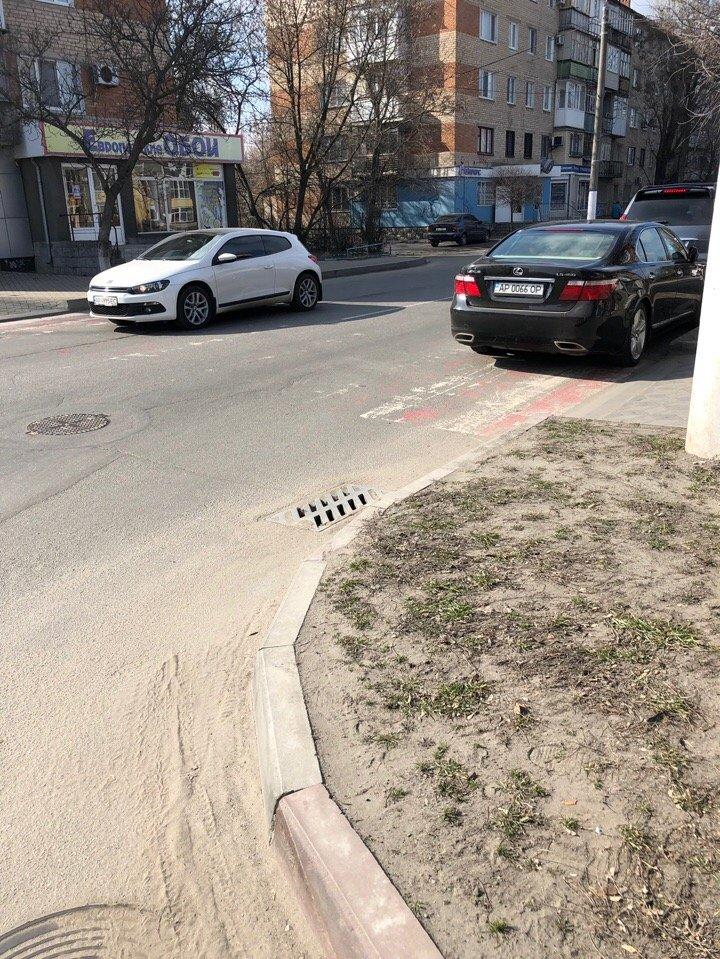 В Мелитополе автохам припарковался на пешеходном переходе, фото-2, Фото из соцсетей