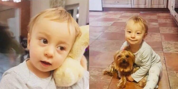Мелитопольцев просят помочь спасти жизнь ребенка , фото-1