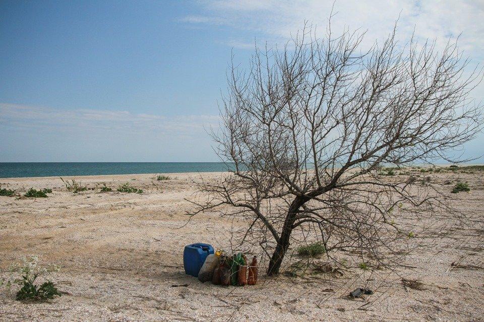 """С побережья Азовского моря убрали тонны мусора , фото-11, Фото со страницы общественной организации """"Эко-корпус"""""""