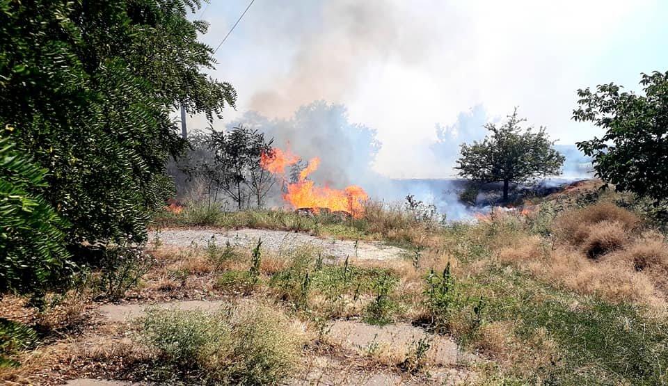 Пожар под Мелитополем тушили всем селом, - ФОТО  , фото-2, Фото со страницы Семеновского сельсовета в Фейсбук