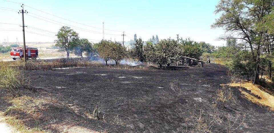 Пожар под Мелитополем тушили всем селом, - ФОТО  , фото-3, Фото со страницы Семеновского сельсовета в Фейсбук