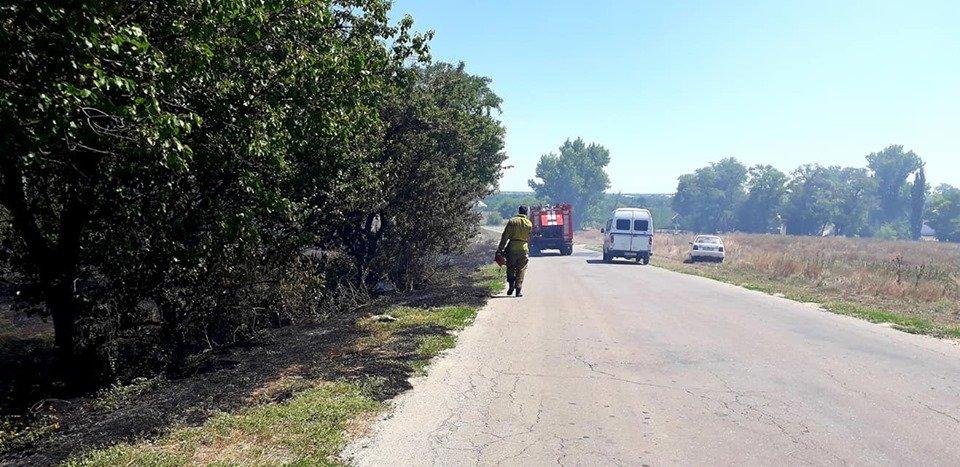Пожар под Мелитополем тушили всем селом, - ФОТО  , фото-5, Фото со страницы Семеновского сельсовета в Фейсбук