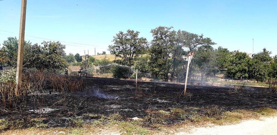 Пожар под Мелитополем тушили всем селом, - ФОТО  , фото-7, Фото со страницы Семеновского сельсовета в Фейсбук