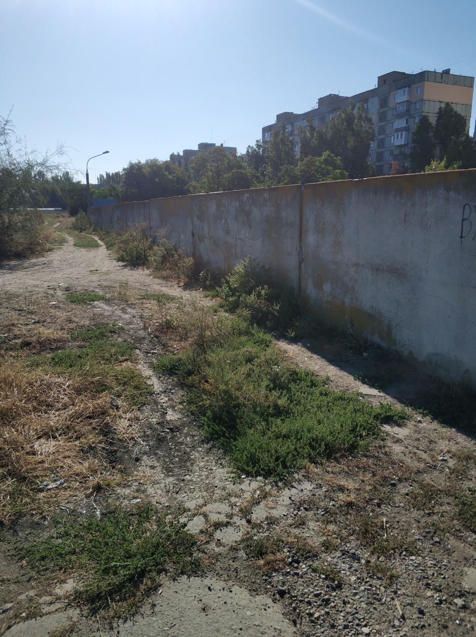 Жителей Мелитополя оштрафуют за мусор и нескошенную траву , фото-2