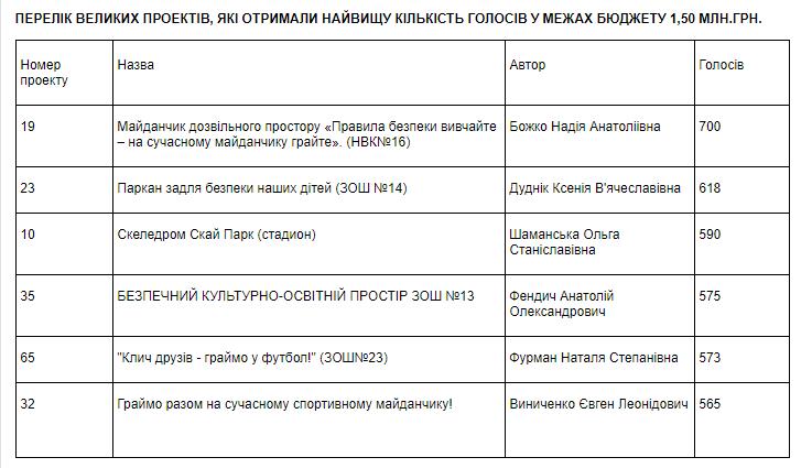 В Мелитополе выбрали проекты, которые реализуют за бюджетный счет, фото-2