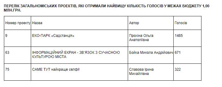 В Мелитополе выбрали проекты, которые реализуют за бюджетный счет, фото-1