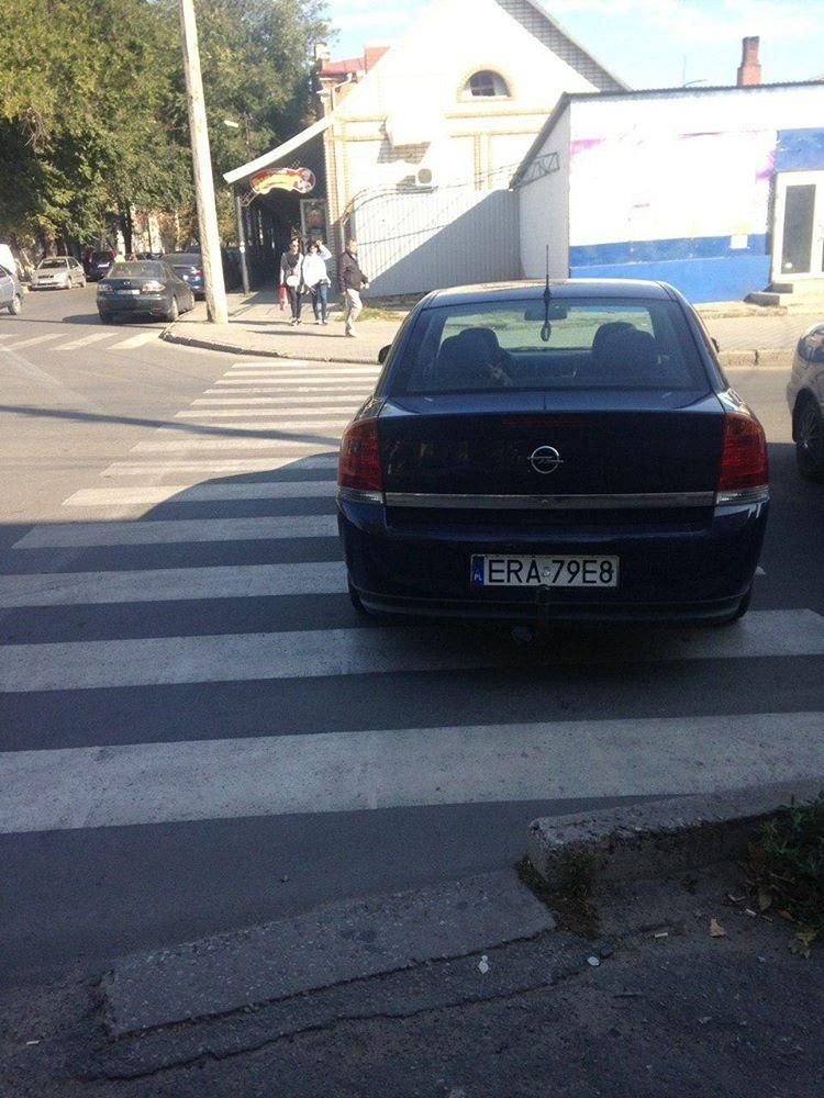 В Мелитополе автохамы продолжают парковаться на пешеходных переходах , фото-3