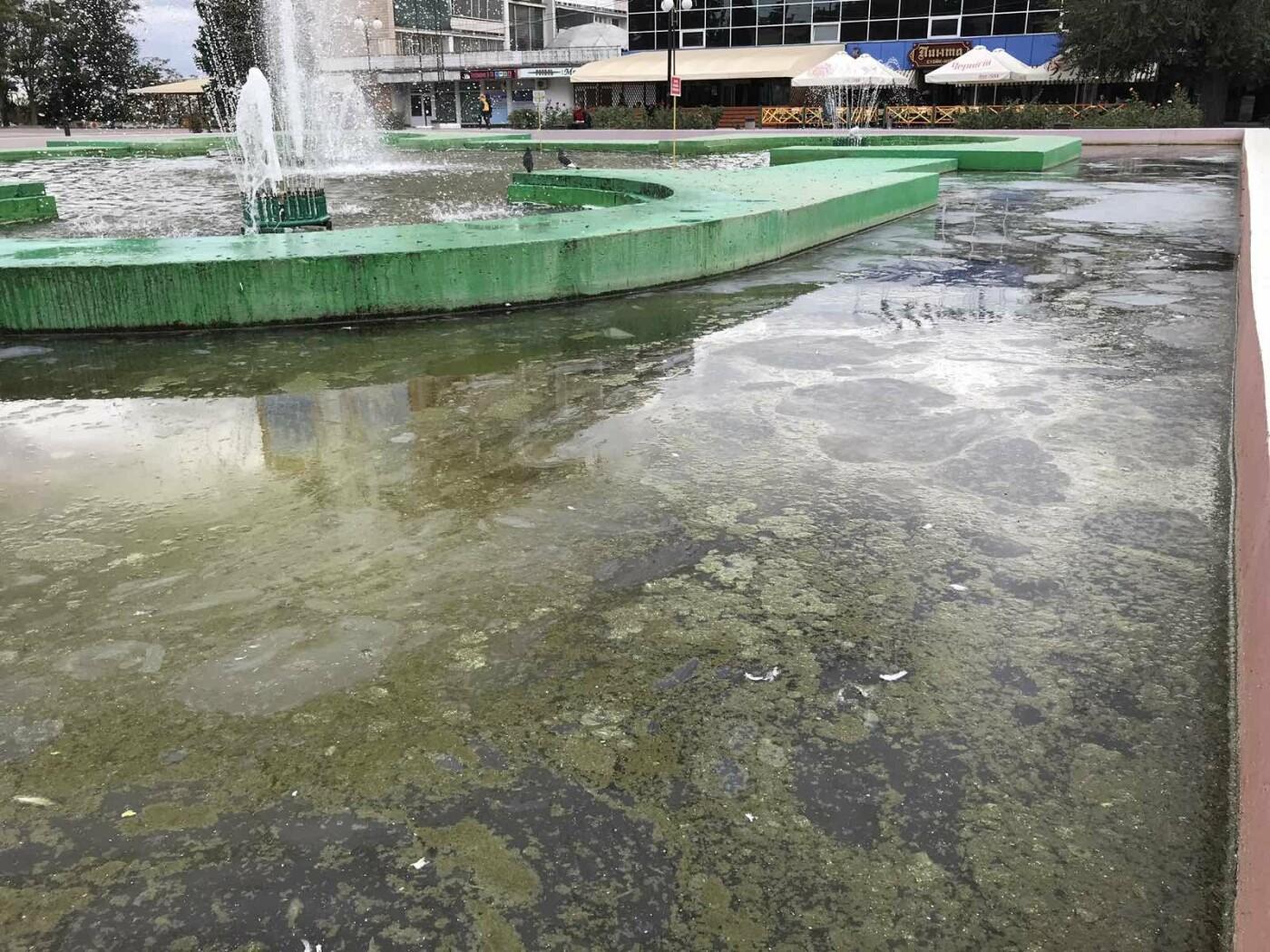 Фонтан в центре Мелитополя превратился в болото, - ФОТО, фото-4