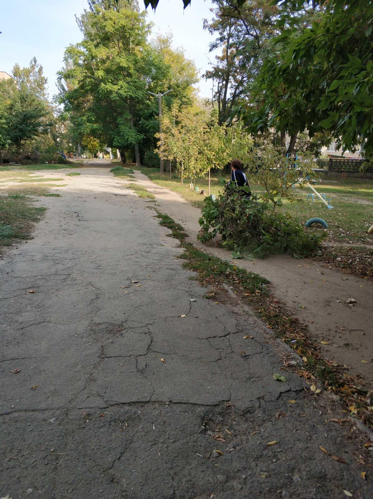 В Мелитополе оштрафуют дворника , фото-4