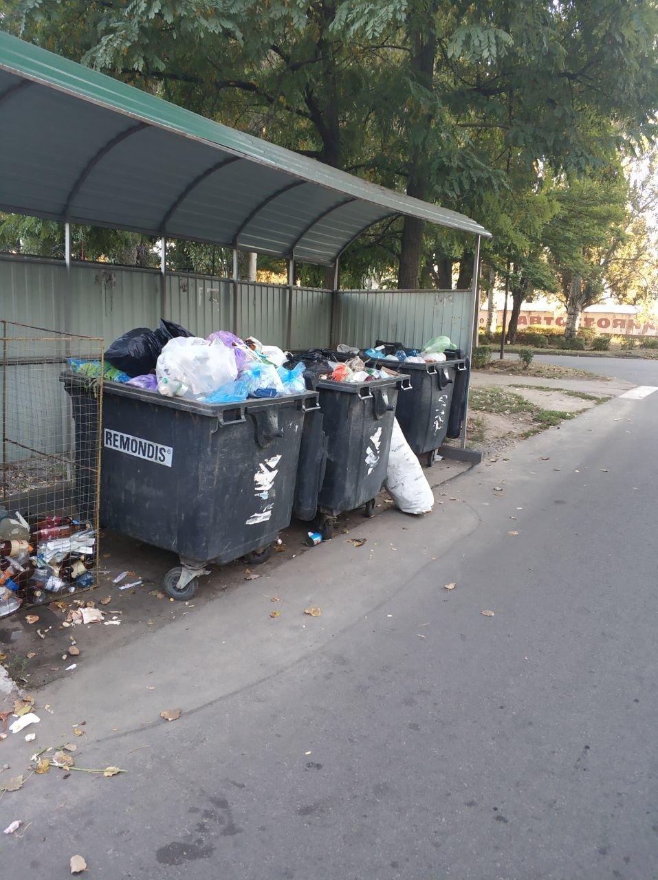 В Мелитополе предприятие оштрафуют за несвоевременный вывоз мусора, фото-1
