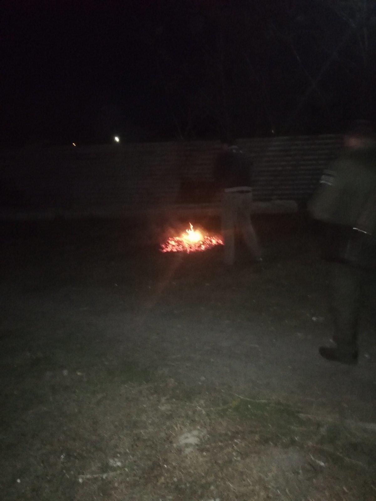 В Мелитополе сжигатель листьев отделался устным предупреждением, фото-2