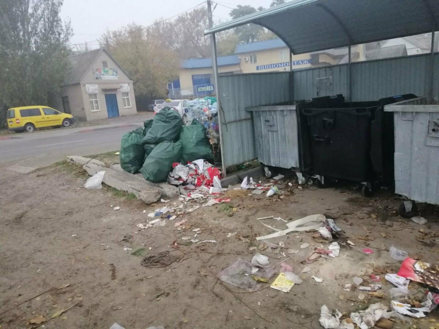 Торговую марку оштрафуют за гору мусора в Мелитополе, - ФОТО, фото-2