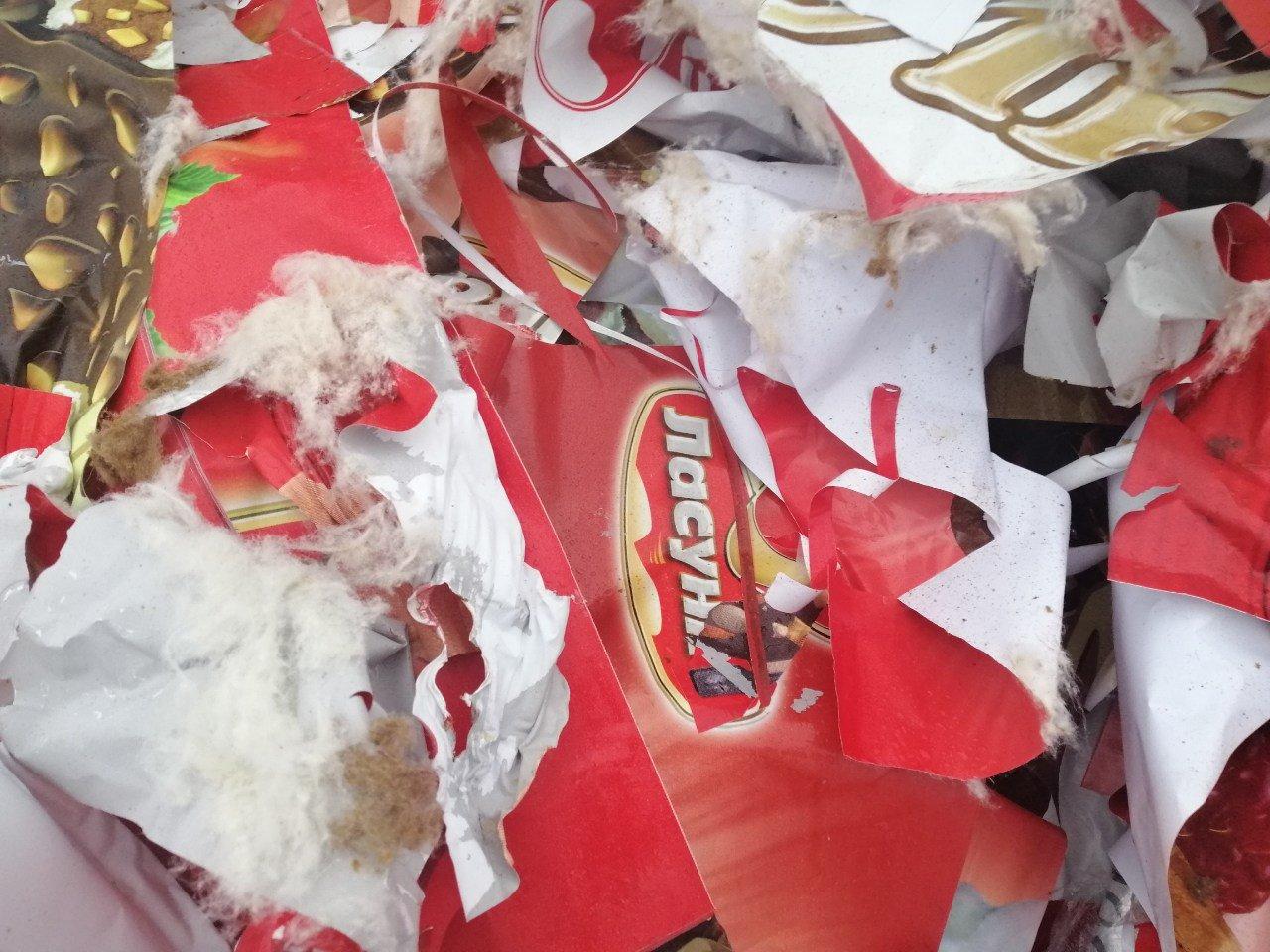 Торговую марку оштрафуют за гору мусора в Мелитополе, - ФОТО, фото-1