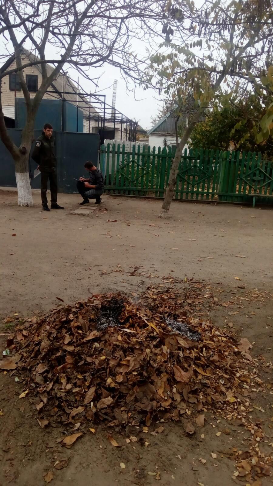 Жителя Мелитополя оштрафуют за сжигание листвы, фото-1