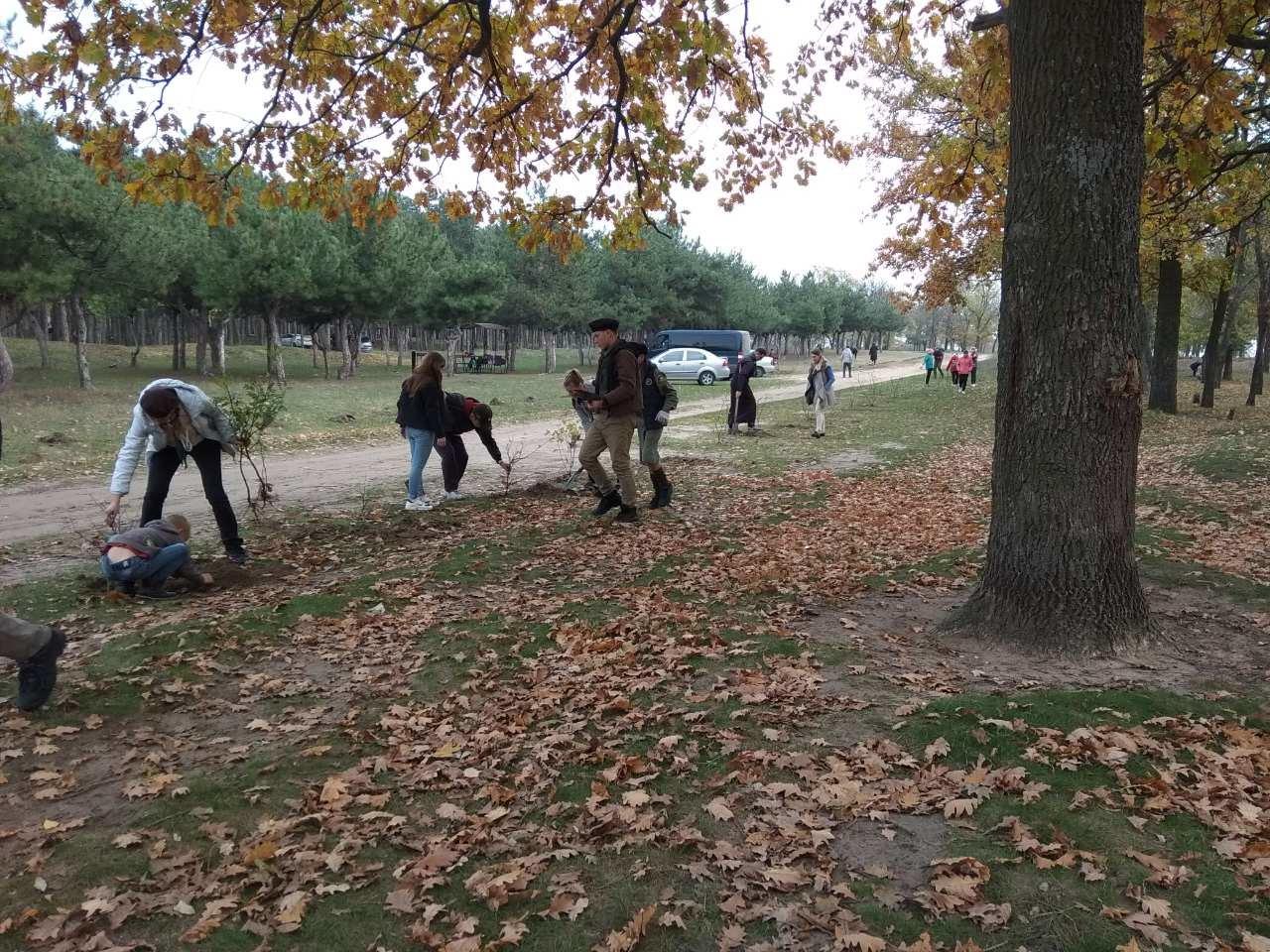В мелитопольском лесопарке высадили более 100 молодых деревьев, фото-1