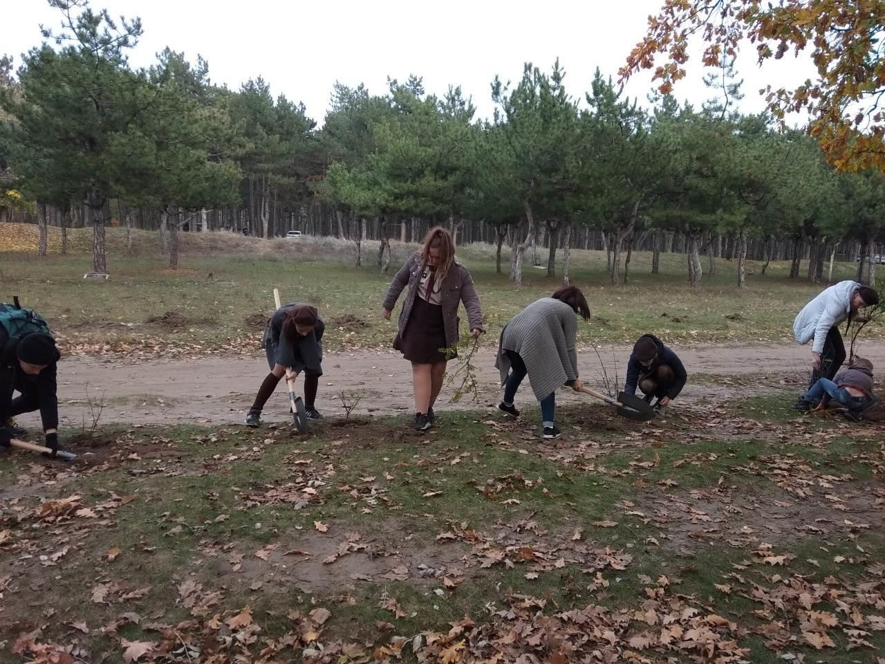 В мелитопольском лесопарке высадили более 100 молодых деревьев, фото-3