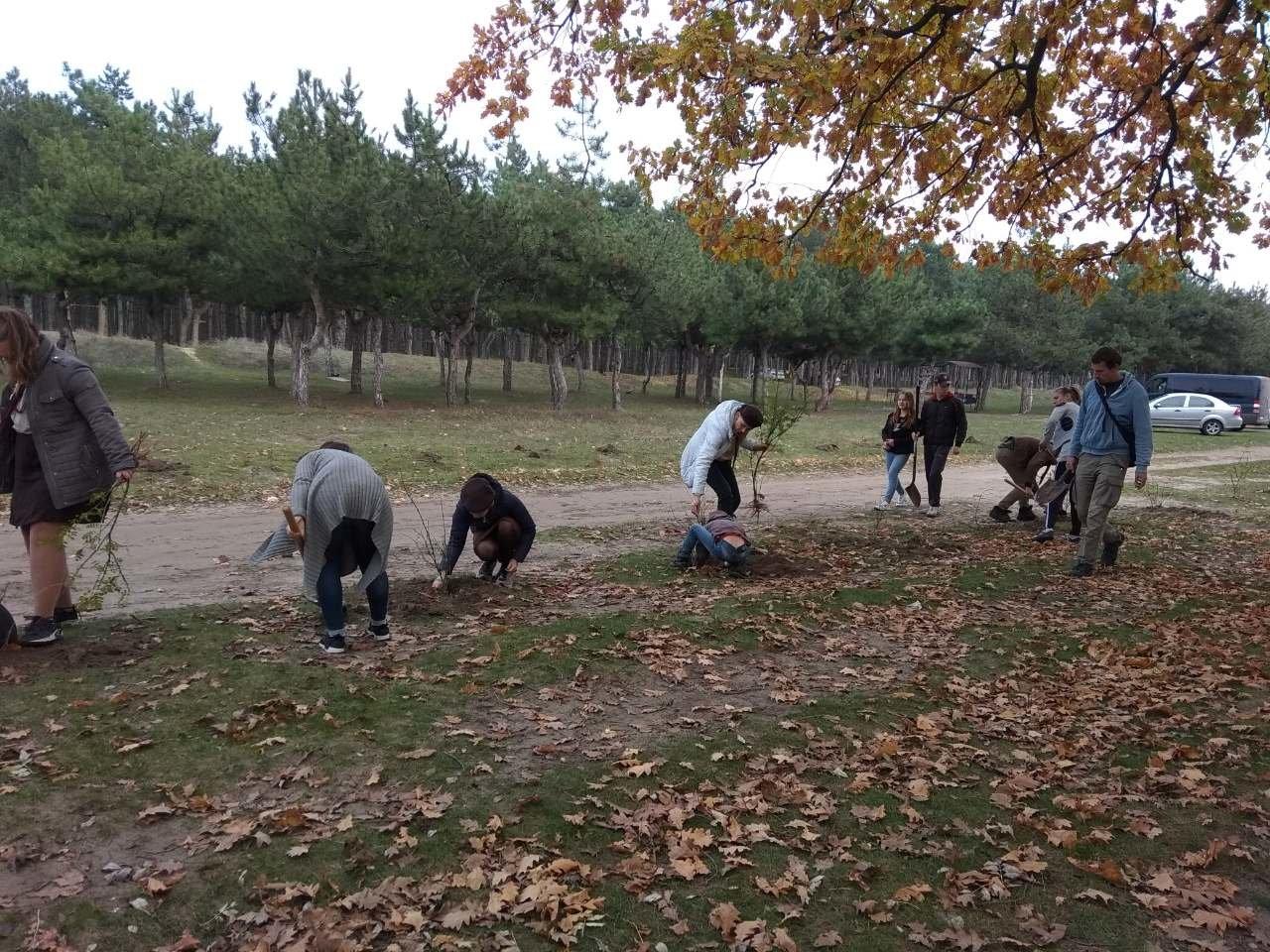 В мелитопольском лесопарке высадили более 100 молодых деревьев, фото-8