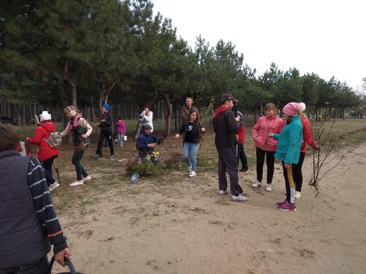 В мелитопольском лесопарке высадили более 100 молодых деревьев, фото-6