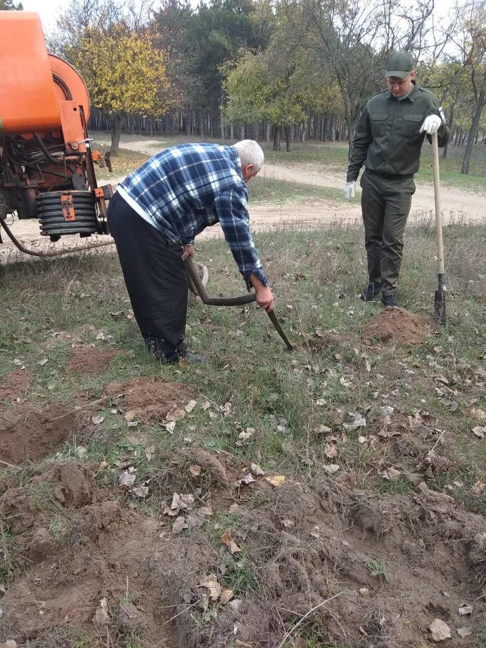 В мелитопольском лесопарке высадили более 100 молодых деревьев, фото-5