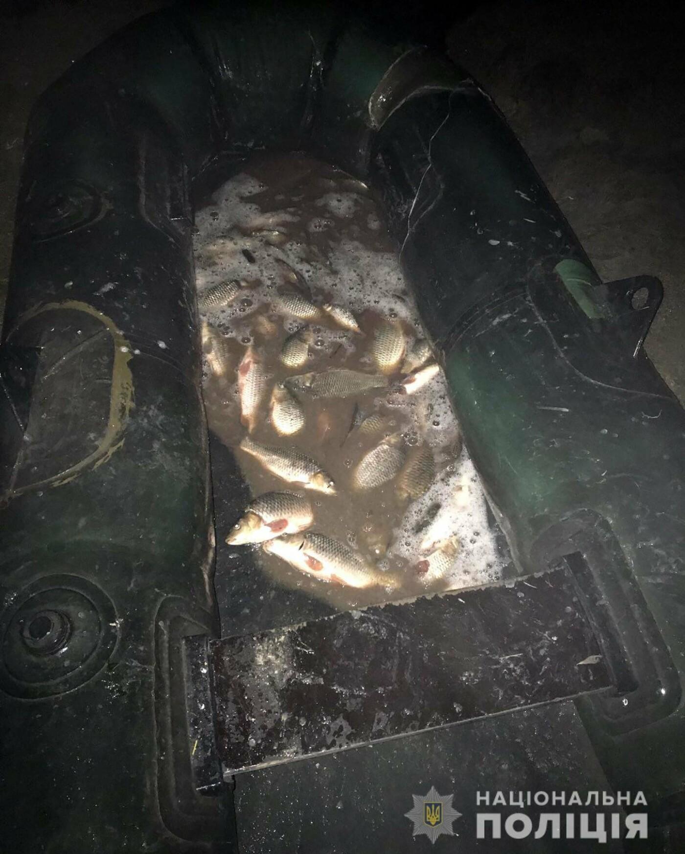 В Акимовском районе задержали браконьера, - ФОТО, фото-2
