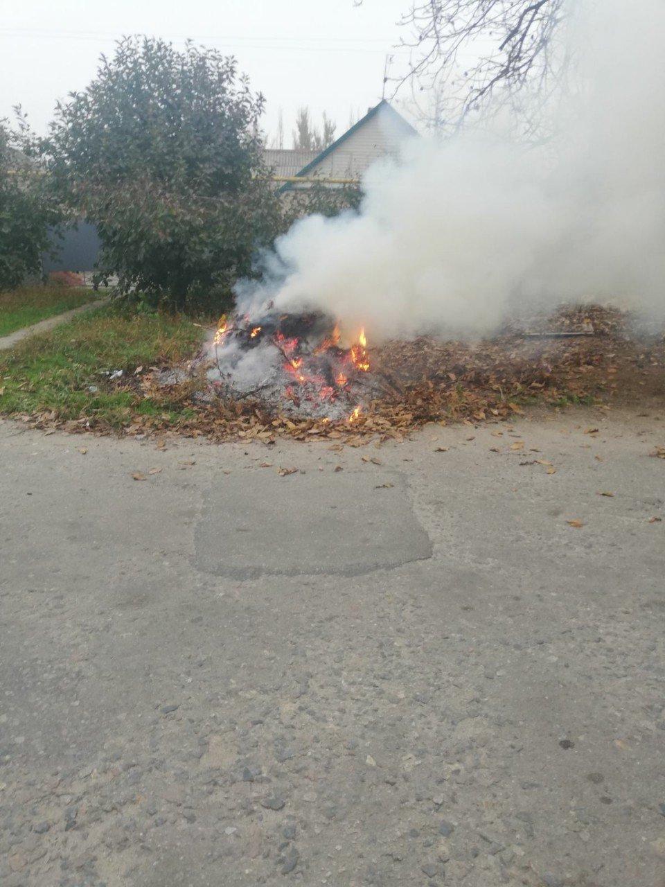 Жительница Мелитополя заплатит штраф за сжигание листвы, фото-1